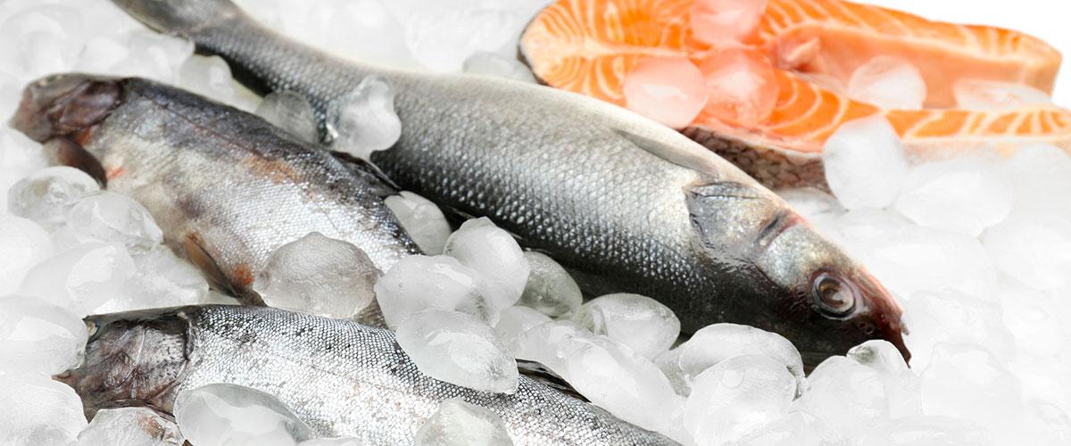 1-poisson-mer-surgeles2